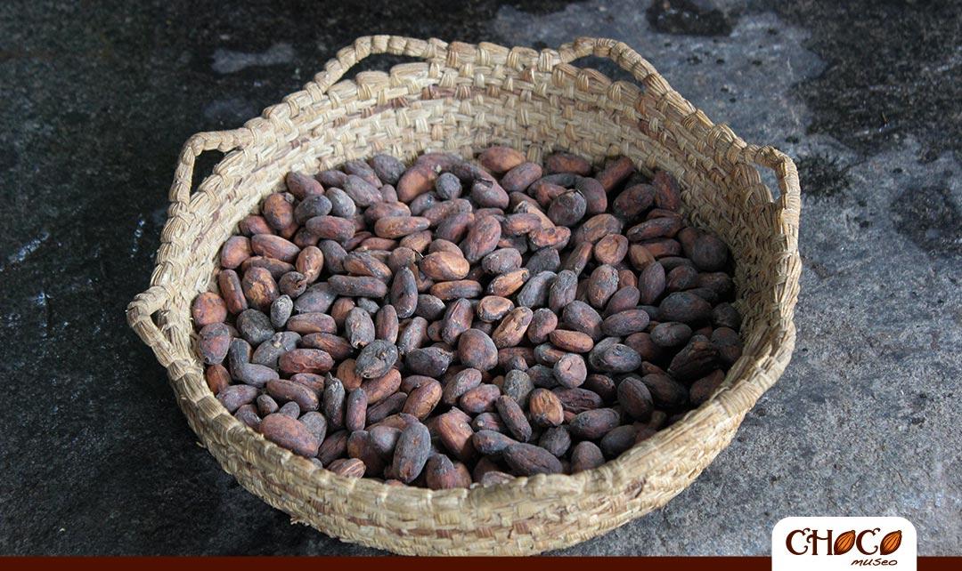 Paso 5: Selección de los granos